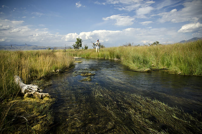 Private Montana Spring Creek