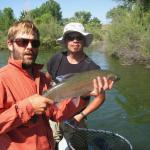 "24"" Rainbow on the Bighorn river in Montana"