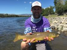 The Purple Drift 2015.  A nice Brown Trout caught in the name of pancreatic cancer awareness.